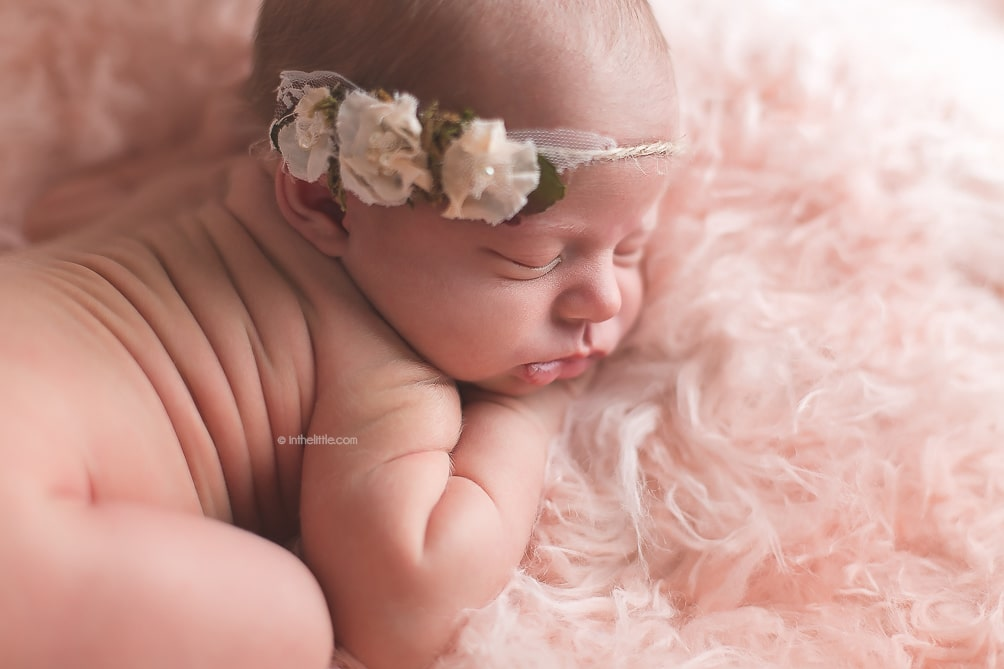 Saint Louis Baby Photographers Portrait Studio