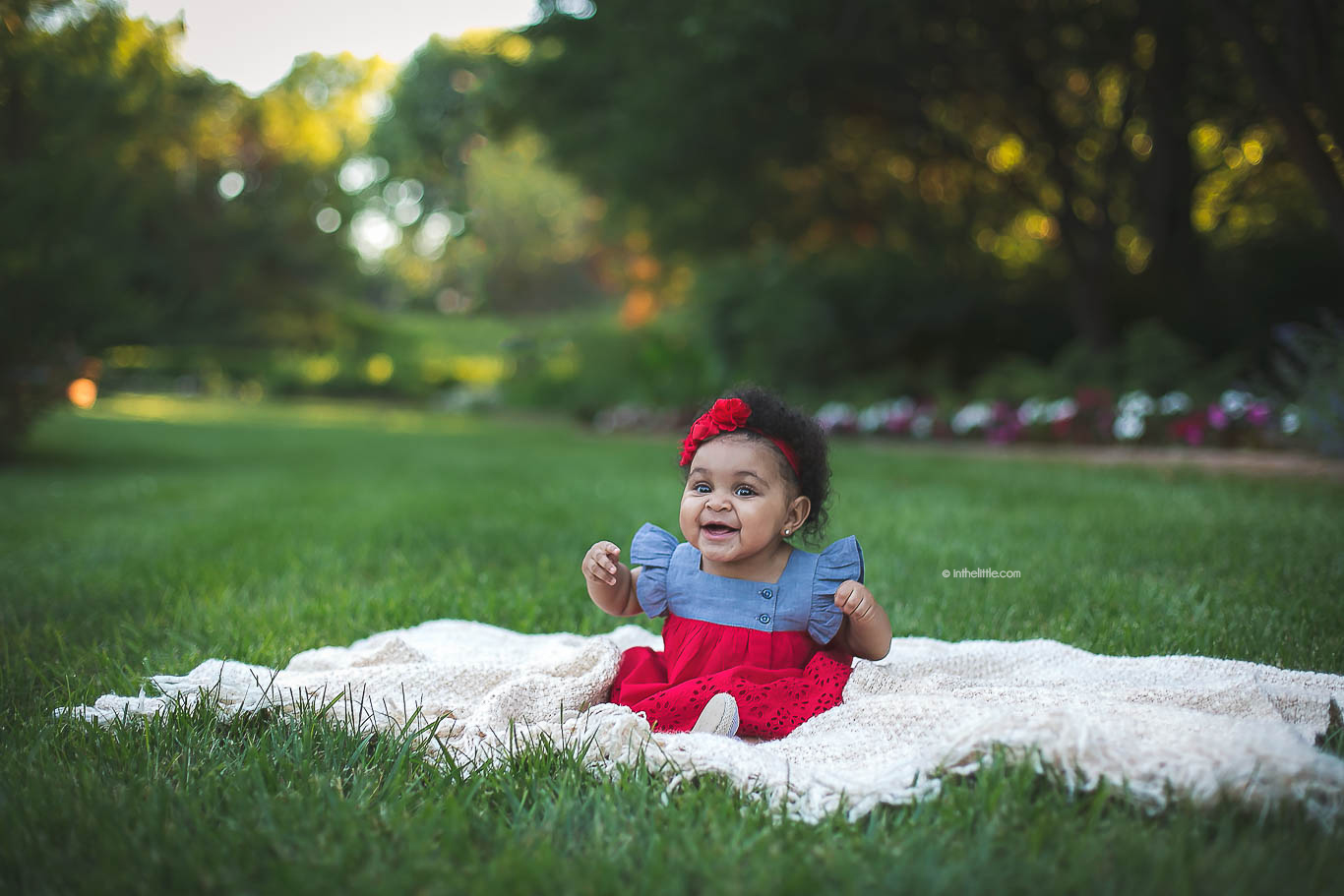 St. Louis Baby Photographers Six Month Baby Portraits
