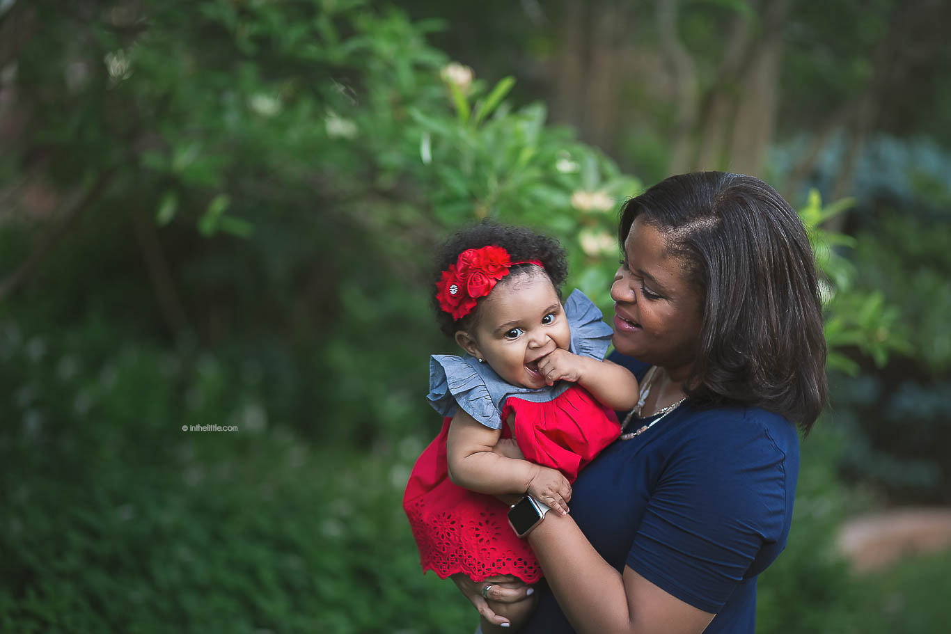 Best Family Photographer Creve Coeur Missouri