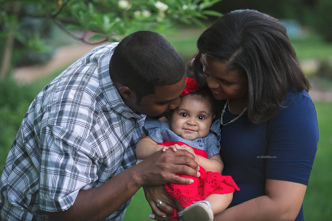 St. Louis Family Photographers