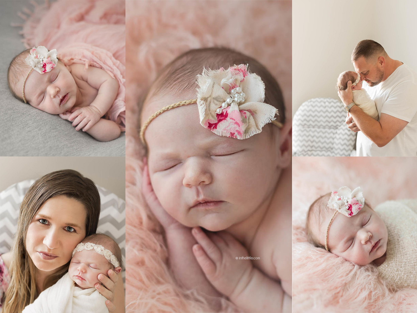 St. Louis Baby Photographers Missouri