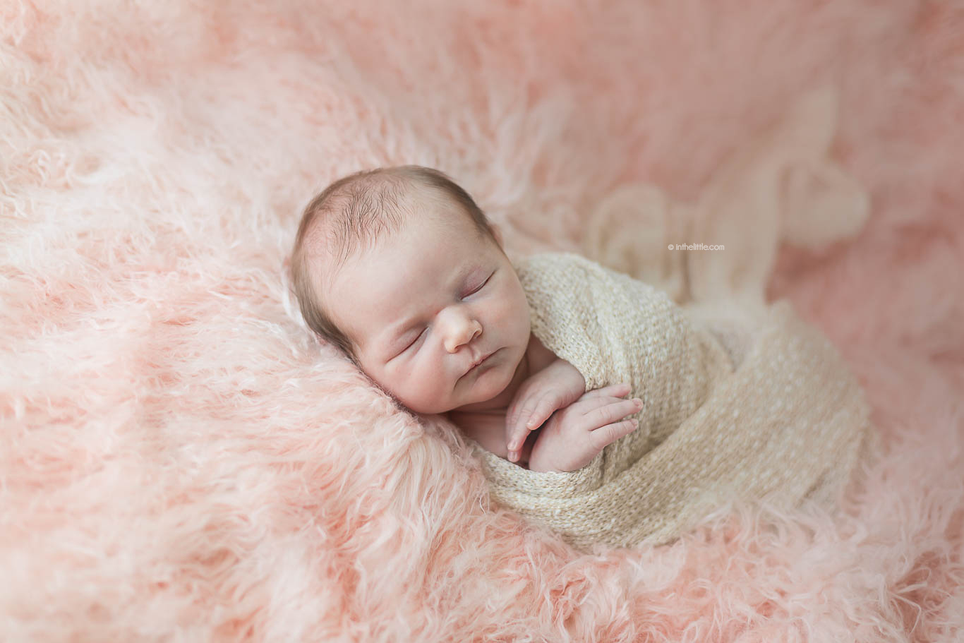 St. Louis Best Newborn Photographers