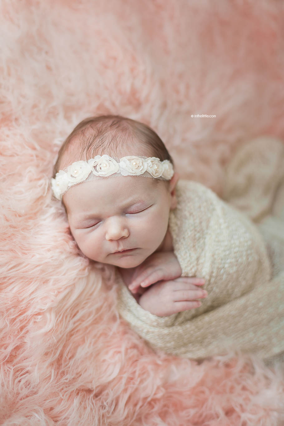 Creve Coeur Missouri Newborn Photographers
