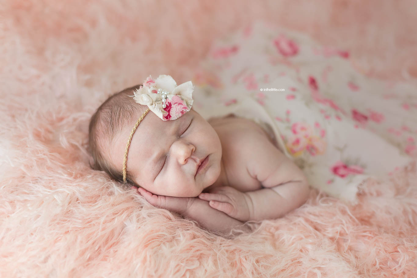 St. Louis Newborn Photographers