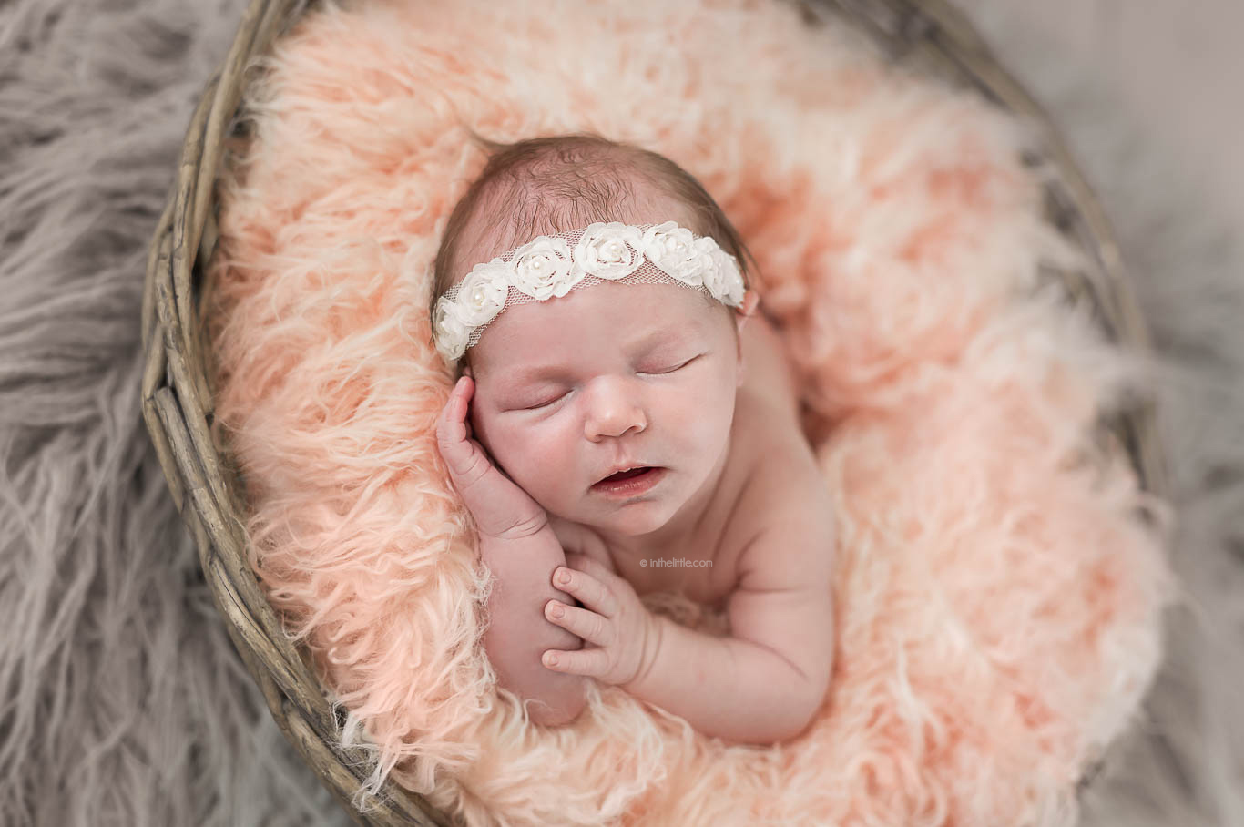 Bably Photography Studio St. Louis
