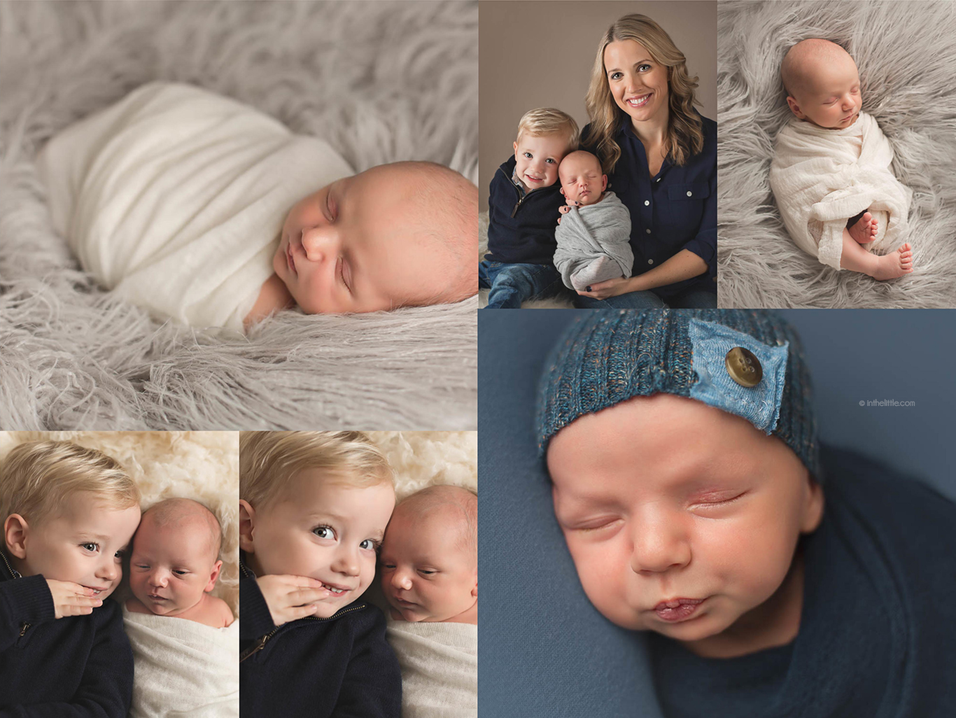 Best Newborn Photographers St. Louis Missouri
