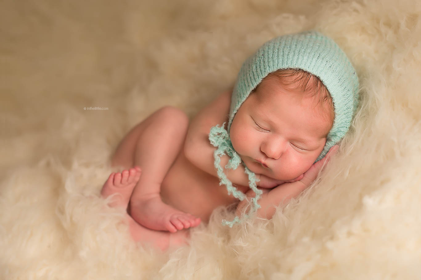 Baby Photographers St. Louis Missouri zipcode 63107