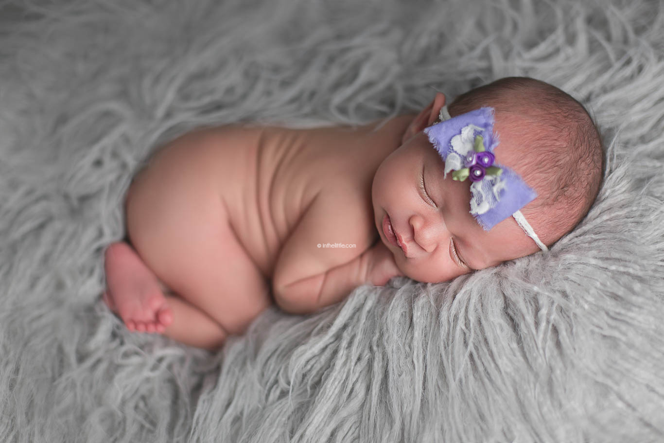 Baby Photo Session Pricing St. Louis Missouri