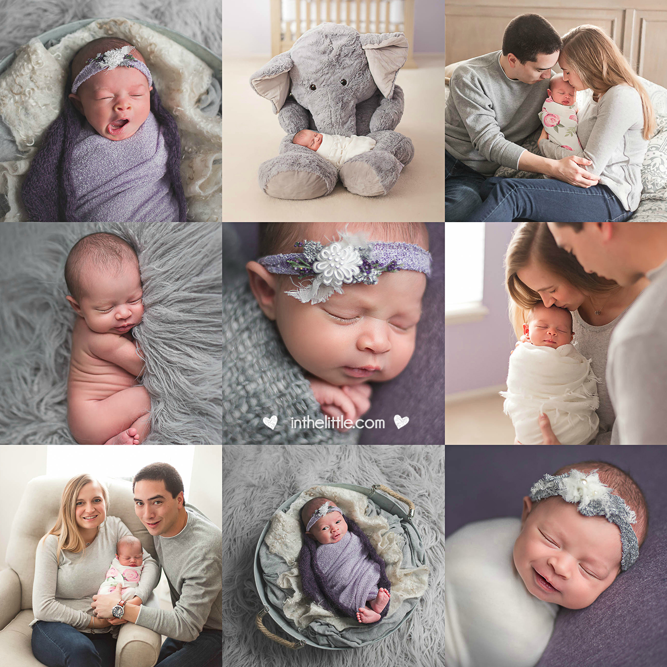 Best Newborn Baby Photographers in St. Louis Missouri