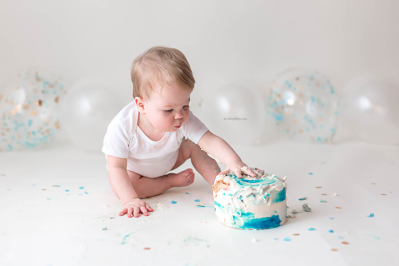 First Birthday Pictures Saint Louis MO