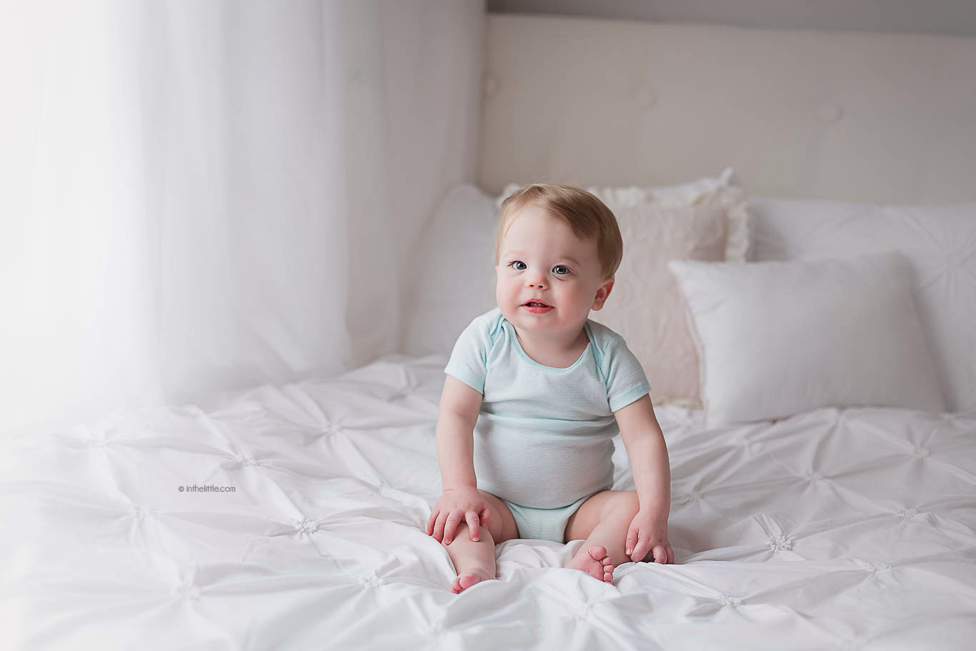 Best Baby Photographers St. Louis Missouri