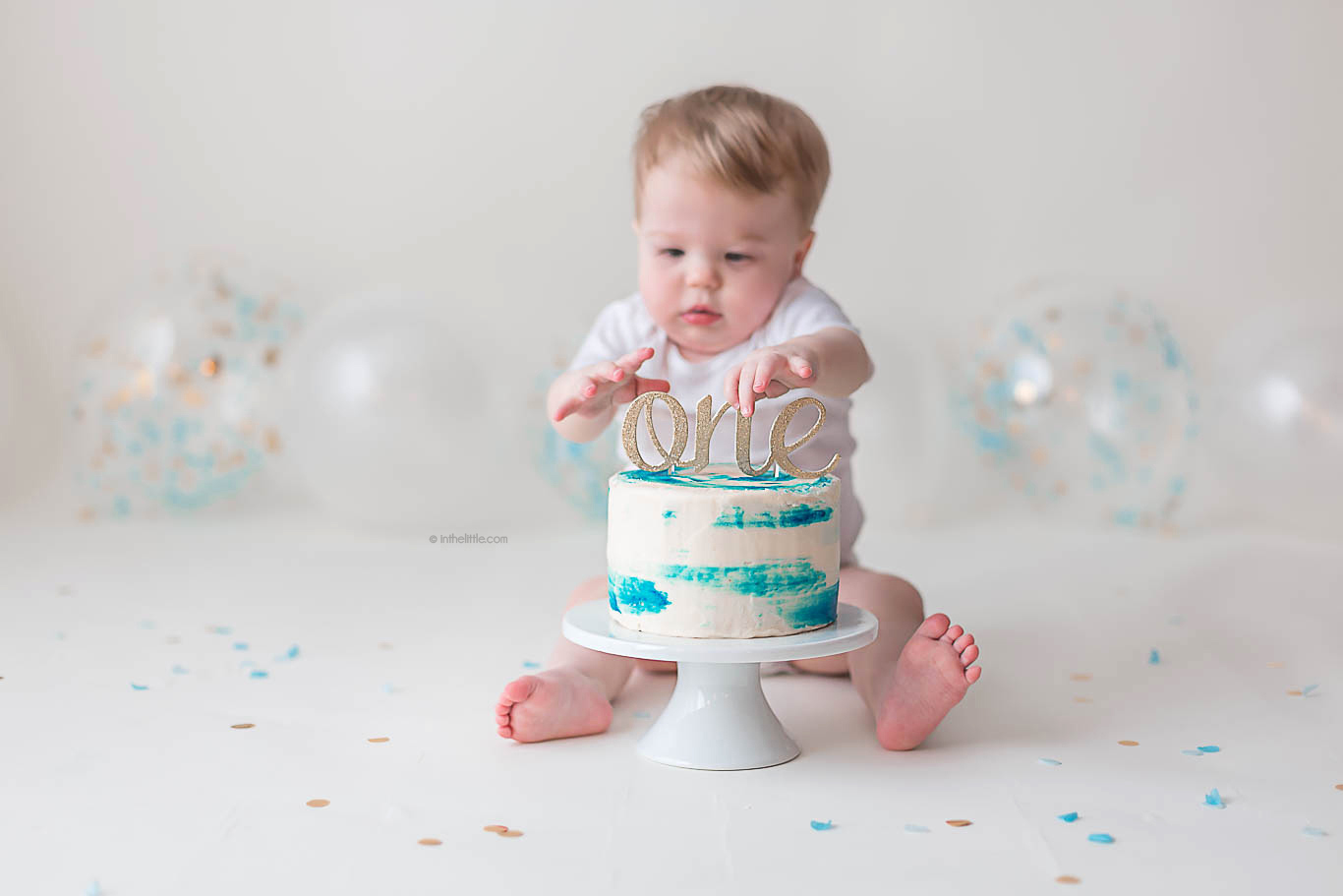 One Year First Birthday Photographers St. Louis
